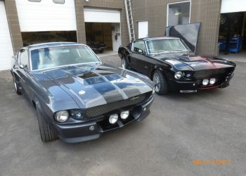 Two Iconic Mustangs